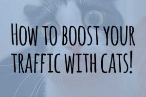boosttrafficwithcats